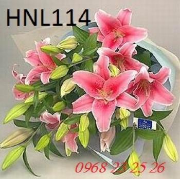 hoa ngay le  hnl114