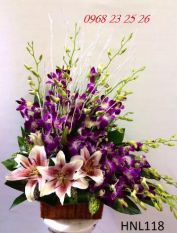 hoa ngay le  hnl118