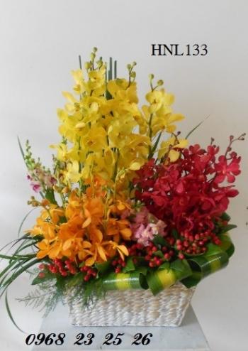 hoa ngay le  hnl133