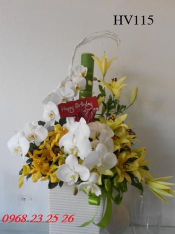hoa vip    hv115