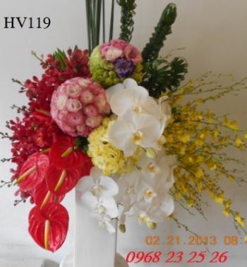 hoa vip    hv119