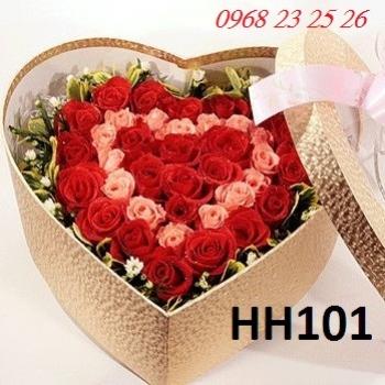 hoa hop  hh101
