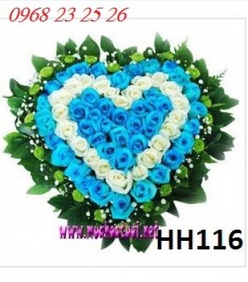 hoa hop  hh116