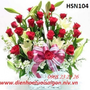 hoa sinh nhat hsn104