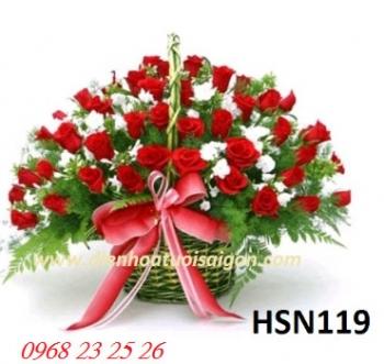 hoa sinh nhat hsn119