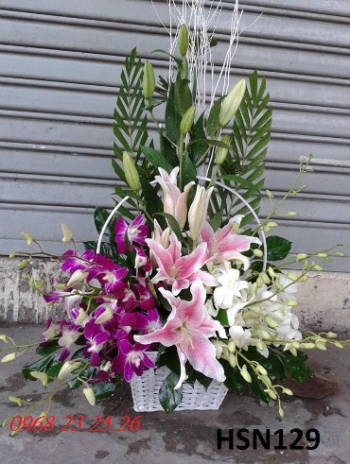 hoa sinh nhat hsn129