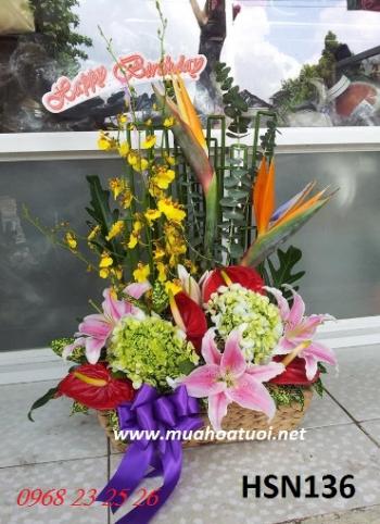 hoa sinh nhat hsn136