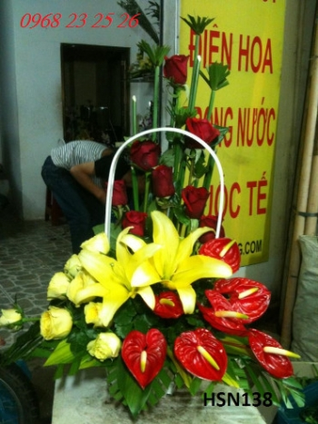 hoa sinh nhat hsn138