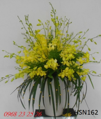 hoa sinh nhat hsn162