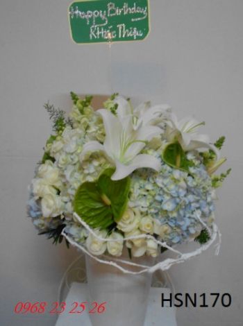 hoa sinh nhat hsn170