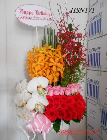 hoa sinh nhat hsn171