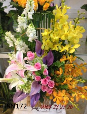 hoa sinh nhat hsn172