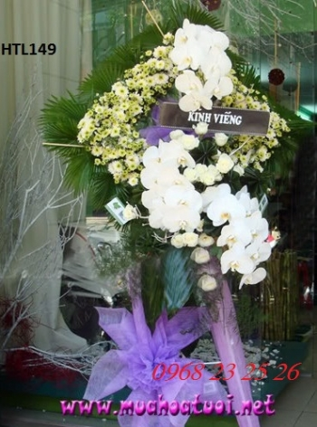 hoa tang le  htl149