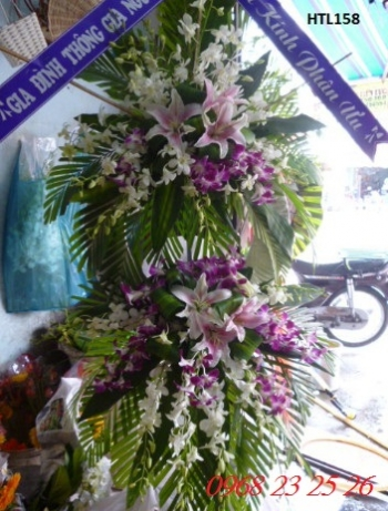 hoa tang le  htl158