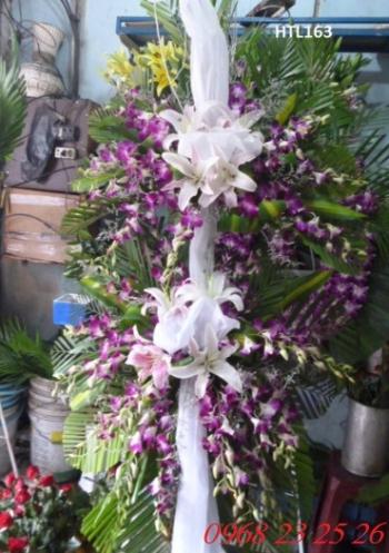 hoa tang le  htl163
