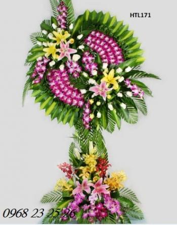 hoa tang le  htl171