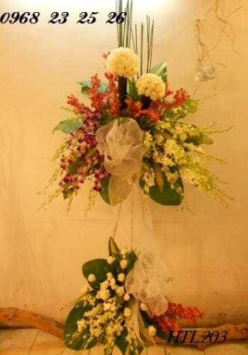 hoa tang le  htl203
