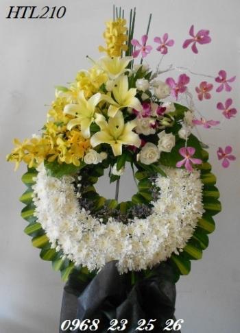 hoa tang le  htl210