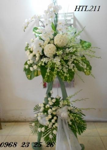 hoa tang le  htl211