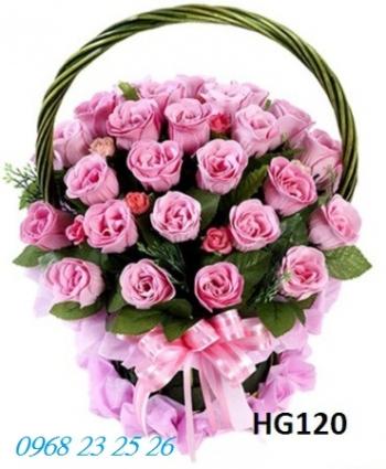 hoa gio  hg120