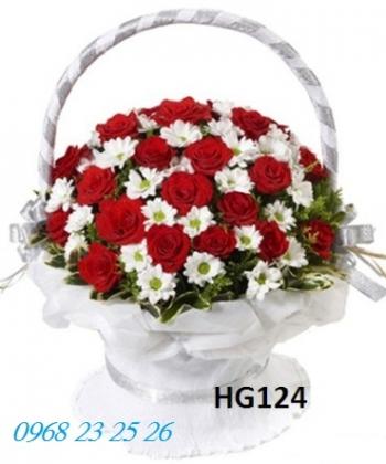 hoa gio  hg124