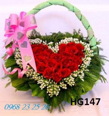 hoa gio  hg147