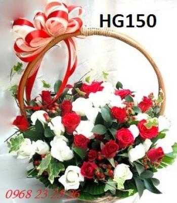 hoa gio  hg150